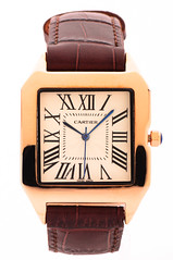 Cartier-Model02 (Hassan AlMarhoun) Tags: brown leather hand watch cartier