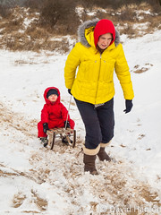 Mother pulls boy on a sledge (dave hanlon) Tags: family winter boy snow playing cold weather children de fun outside outdoors happy vakantie child play lol dunes small dune sneeuw familie kinderen young mother mama kind mum together recreation lachen pulling moeder duinen vrouw pleasure lach active sneeuwpret sledge sledging slee kou pret koud gezin duin spelen samen jongen slepen plezier togther relaxen vakantiegevoel trekken vreugde duingebied ontspanning recreatie dezilk ontspannen waterleiding sleeen sleetje