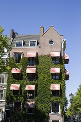 Houses - Achtergracht (Wookiee!) Tags: amsterdam 020 the netherlands nederland architecture ef 35mm f2 is usm canon d550 holland dutch city street urban life summer hot raw warm beautiful color colour capital hoofdstad nl wwwgevoeligeplatennl