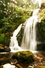 Triberg (laura.foto) Tags: waterfall waterflowing triberg blackforest nature water germany