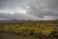 Berserkjahraun 51 (raelala) Tags: 2016 berserkjahraun snaefellsnes snaefellsnespeninsula canon1785mm crater europe europeantravel iceland icelanding2016 lava lavafield photographybyrachelgreene ringroad roadtrip scandinavia thatlalagirl thatlalagirlphotography thatlalagirlcom travel