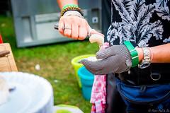 PPB_9211 (PeSoPhoto) Tags: proefpark kenaupark haarlem holland foodtruck foodtrucks summer food festival catchoftheday