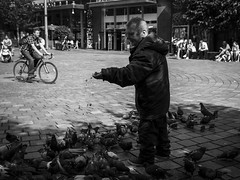 Crumbs (Leanne Boulton) Tags: monochrome outdoor urban street candid portrait streetphotography candidstreetphotography streetlife sociallandscape man male face facial expression look emotion feeling feeding bird birds pigeon pigeons crumbs wildlife feral poverty tone texture detail depth natural light sunlight shade shadow shadows city scene human life living humanity people society culture canon 7d wideangle black white blackwhite bw mono blackandwhite glasgow scotland uk