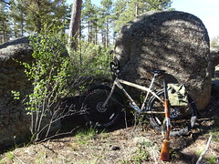 Spring Turkey Hunting (berryns1) Tags: hunting rugerredlabel shotgun turkey colorado wildlife bicycle novarasafari