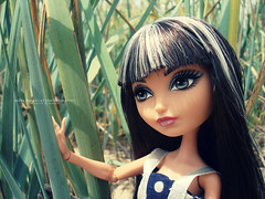 Cerise Hood (seiya_mooncat) Tags: everafterhigh eah doll dolls osalina mattel photo photos 2016 everafterhigh2016 photoshoot cerisehood thedaughterofredridinghood littleredridinghood basic