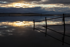 Marine Lake Reflections (David Chennell - DavidC.Photography) Tags: reflection calm moody wirral merseyside westkirby marinelake