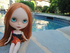 A glorious beauty by the pool