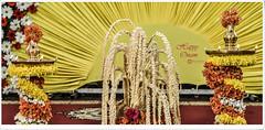 Happy Onam (Ramalakshmi Rajan) Tags: onam2016 wishes kerala nikond5000 nikon nikkor35mm indoor lamps lamp