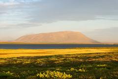 2012.08.09 22.11.34.jpg (Valentino Zangara) Tags: 5star flickr iceland landscape norurlandeystra islanda is