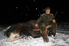 "Moose Hunting In Estonia • <a style=""font-size:0.8em;"" href=""https://www.flickr.com/photos/61427906@N06/8172823267/"" target=""_blank"">View on Flickr</a>"