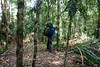 Im Kampf für den Individualtourismus - Wegmarkierung ((trinchen)) Tags: indonesia asia asien bomba sulawesi indonesien doda badavalley bergansalpinistescape