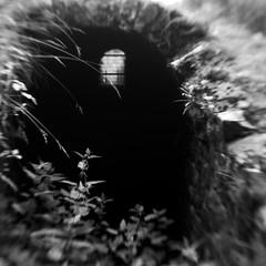 Nether Wood 13 - Flue (Adam Clutterbuck) Tags: wood uk greatbritain england blackandwhite bw tree monochrome lensbaby square landscape mono blackwhite roman unitedkingdom britain ground somerset bn mining elements gb bandw sq remains mendips charterhouse undergrowth gruffy nether greengage netherwood adamclutterbuck sqbw bwsq showinrecentset netherwoodproject