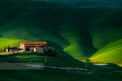 Tuscany Landscape (May 2005) (Michele Berti) Tags: italy house verde green film field farmhouse analog landscape landscapes countryside casa italia farm wheat sienna slidefilm campagna tuscany campo siena toscana valdorcia paesaggi paesaggio analogica countryhouse grano cretesenesi wheatfield fujivelvia50 canoneos3 agricoltura pellicola agricolture tuscancountryside campagnatoscana fujifilms fujichromevelvia50rvp tuscanylandscapes analogicait coloridellavaldorcia fotografiedellavaldorcia fotografiedellecretesenesi