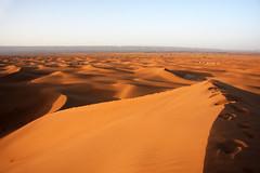The desert near M'Hamid, Morocco 2012 (sensaos) Tags: africa travel desert north du morocco marocco afrika marokko nord 2012 noord woestijn afriue sensaos