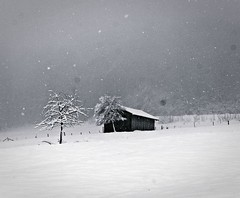 Richtiger Winter (Djeff Costello) Tags: november schnee winter blackandwhite house snow fog germany deutschland nebel alb allemagne wrttemberg gammelshausen