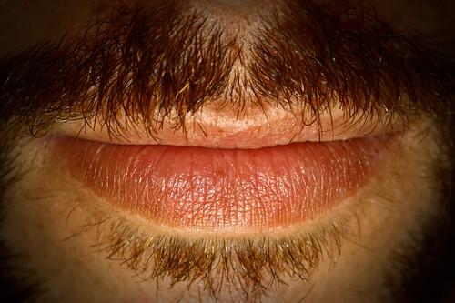 bigote