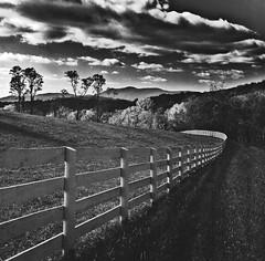 Early morning (louieliuva) Tags: blackwhitephotos