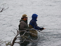 Patagonia Fly Fishing - Torres del Paine NP, Chile (Cascada Expediciones) Tags: chile people fish sports fly fishing flyfishing torresdelpaine activity cascada ecocamppatagonia