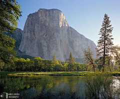 First Light, El Capitan (James L. Snyder) Tags: california park morning blue trees light cliff usa sunlight white mountain green water field grass june rock horizontal wall forest reflections river giant reflecting early carved nationalpark spring riverside natural pastel meadow ivory first peaceful sunny sierra glorious shore valley yosemite granite verdant serene tall yosemitenationalpark lush soaring riverbank titanic elcapitan sierranevada grassland majestic 2008 monolith milky vignette tranquil looming colossal immense towering sculpted yosemitevalley riparian lofty monumental enormous mercedriver grandeur statuesque mariposacounty elcapitanmeadow elcapitangully