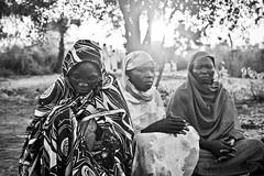 Sudanese refugees (Samer M) Tags: africa women war refugees sudan hijab aid conflict muslims humanitarian africans bluenile femaleheadedhouseholds