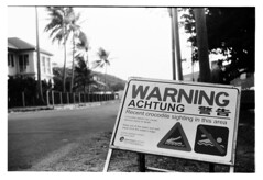 Achtungs (electricnerve) Tags: bw film werra torresstrait thursdayisland polypan