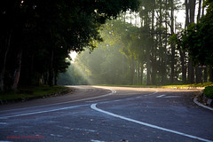 Morning Drive (sydbad) Tags: morning travel sunlight canon fun photography eos drive early is photo ii l 5d usm ef f4 mk 24105mm
