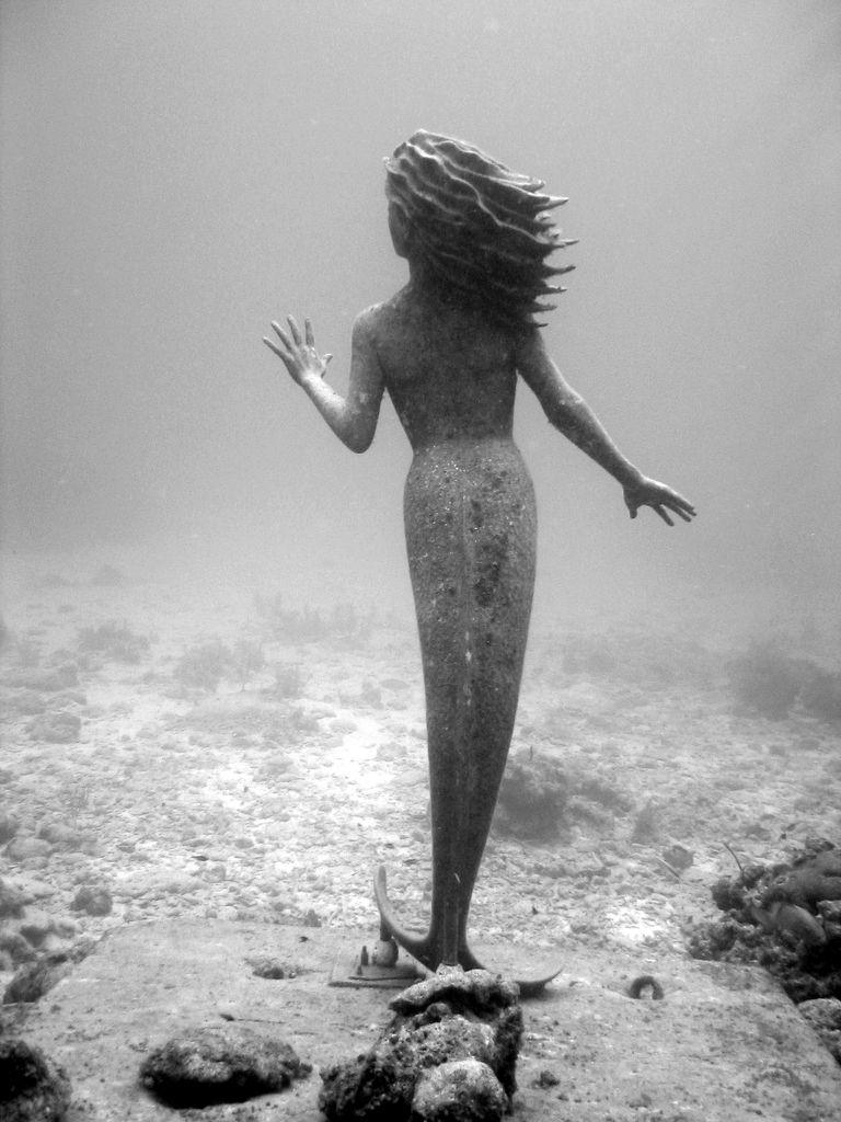 Amphitrite, Grand Cayman