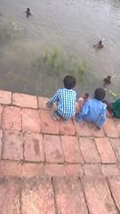 Indian kids bathing in a pool (ShaluSharmaBihar) Tags: bathing kids pool bihar india