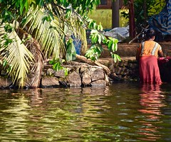 Reflections on a Laundry Day (The Spirit of the World) Tags: laundry wash clothes reflections wonan local palms palmtrees home kerala lake backwaters india southernindia waterways