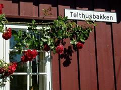 20150702-068F (m-klueber.de) Tags: 20150702068f 20150702 2015 mkbildkatalog norwegen norge norway oslo telthusbakken