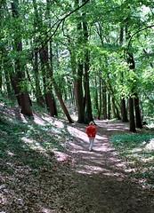 shady path (kexi) Tags: vertical forest green shadows walk walking path woman jastrzebiagora poland polska pomorze pomerania canon june 2015 trees shady instantfave autoremovedfrom1to5faves