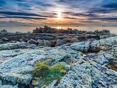 Colours of Hopeman (1) (Stoates-Findhorn) Tags: 2016 clouds firth hopeman lichen rocks scotland sundog sunset moray unitedkingdom