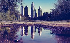 Mundos paralelos (Sebas Fonseca) Tags: sebafonseca reserva ecologica buenosaires argentina color colors arquitectura nature reflejo reflection water city urban travel world towers sky sony a6000 ilce 6000 vintage