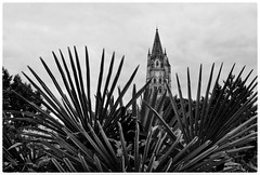 En éventail derrière l'église (vandrende) Tags: aquitainelimousinpoitoucharentes church fra france frankrike poitoucharentes sainteutrope saintes bw charentes kirke nb svarthvit église