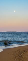 Gradient (lucasrose7) Tags: gradient color spectrum colorful blue orange yellow magenta pink purple sand sky water panorama