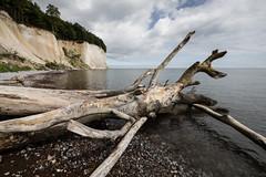 beach (hansekiki ) Tags: rgen jasmund nationalpark landschaften zeissdistagont2815mm distagon1528ze distagont2815 ze ostsee balticsea canon 5dmarkiii