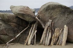 Driftwood structure on the beach (LOLO Italiana) Tags: carmel ca driftwood structure rockformations carmelmiddlebeach details closeups pacificocean beach sand sculpture nature kelp rocks