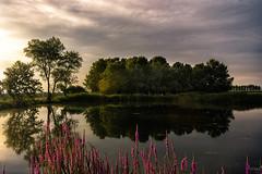 Bon dia (ancoay) Tags: sunrise summer water reflection reflexes ancoay canon600d sky paisaje amanecer despertar agua reflejo alba reflex paisatge landscape dawn