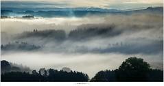Workshop Frankrijk - Kingdom of clouds (nandOOnline) Tags: mist workshop fog nevel zonsopkomst bomen heuvels la potence wolken uitzicht fotografie ochtendmist allegre fougeraie auvergne ochtend frankrijk