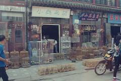 prisões (jubirubas) Tags: china xingcheng