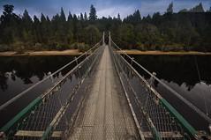 burn_all_bridges? (Triggerhippie_Robin_Zoeger_Photography) Tags: travel bridge end beginning river forest solitude