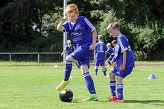 Feriencamp Pln 30.08.16 - b (79) (HSV-Fuballschule) Tags: hsv fussballschule feriencamp pln vom 2908 bis 02092016