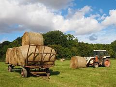 P9250296 (simonrwilkinson) Tags: rutland marketoverton field tractor hay bales