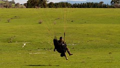 Johno touchdown (overflow50) Tags: paragliding paraglider canberra springhill spring australia sky clouds