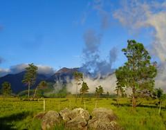 LLano al Volcan Baru (Jhaan) Tags: mountains volcanbaru chiriqui highlands lasalturas panama light shadow llano volcanicsavannah