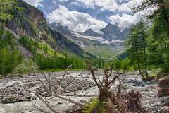 Parco Nazionale Gran Paradiso (Ivan van Nek) Tags: valnontey nikond3200 d3200 hdr valledaosta valledaoste parconazionalegranparadiso italie italia itali italy italien