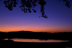 (Mattygraphy) Tags: sunset sky evening afterglow colorful leaves lake water sonnenuntergang himmel abend abendrot bltter see wasser ltzelsee