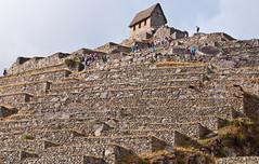 Machu Picchu-92