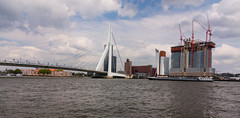 Rotterdam Skyline / Erasmus Bridge (danielfoster437) Tags: city bridge urban river rotterdam commerce business trade meuse prosperity erasmusbridge rotterdamskyline rotterdamriver