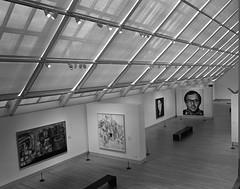 Met (zalkr) Tags: white newyork black art film museum acrylic close kodak tmax mark canvas cheers chuck medium format 100 6x7 metropolitan 65mm mamiya7ii cheers2 chuck1 chuck2 chuck3 chuck4 cheers3 cheers4 cheers5 chuck6 chuck9 chuck5 chuck7 chuck8 1978–1979 loveitchuck10